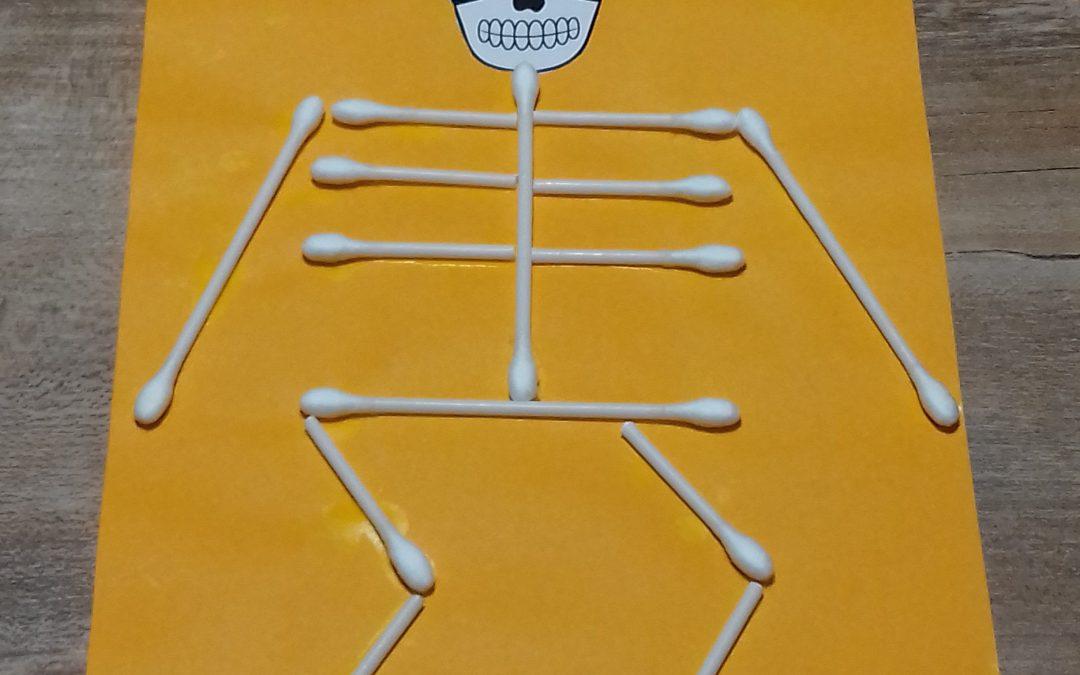 squelette d' Halloween…