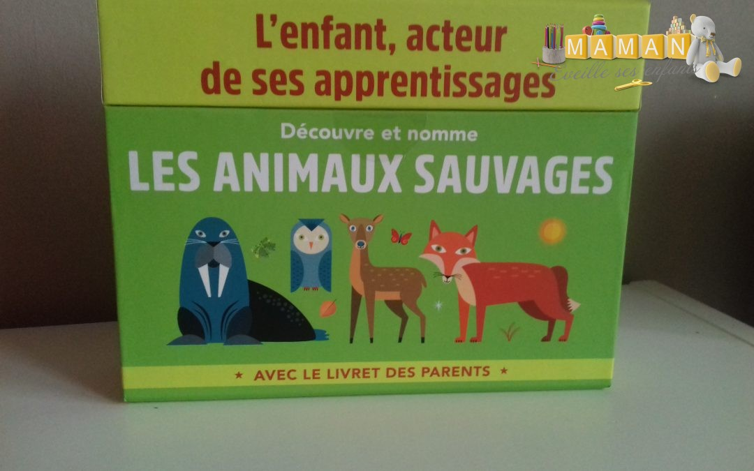 Activité Montessori :  Découvre et nomme les animaux sauvages chez Hachette