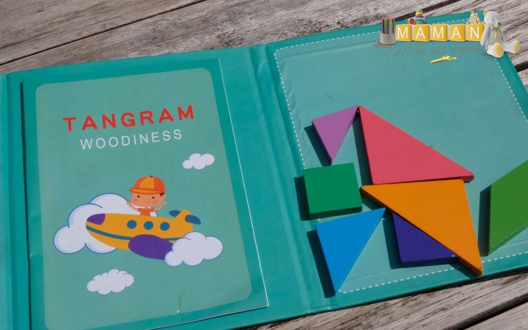 Le tangram magnétique de voyage MECAPUZZLE